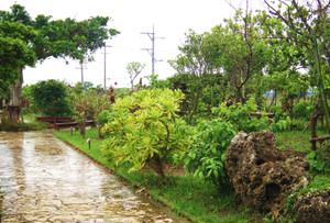 Okinawa_015