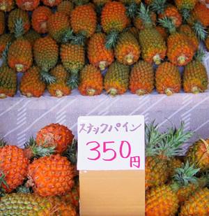 Okinawa_367
