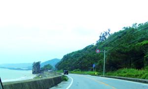 Okinawa_338