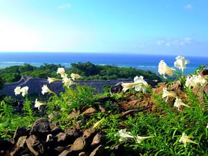 Okinawa_283
