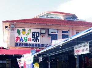 Okinawa2014_036