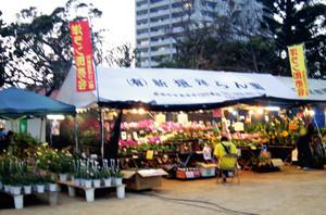 Okinawa2014_084